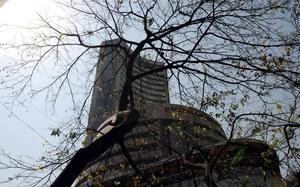 Sensex rises 247 points on positive global cues; Infosys top gainer