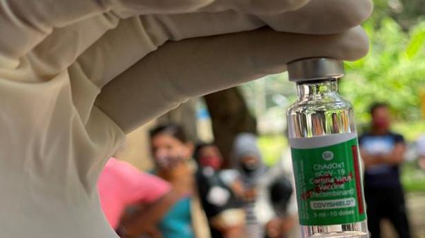 'Vaccination key to health of economy,' says K.V. Subramanian