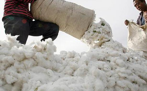 U.S. bans cotton imports from China producer XPCC citing Xinjiang 'slave labour'