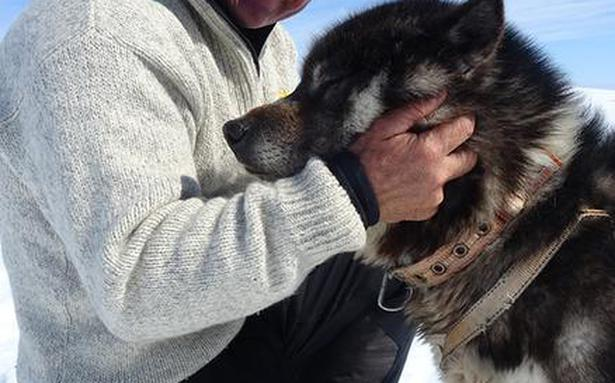 Steve Backshall's new show explores uncharted areas in Bhutan and Greenland