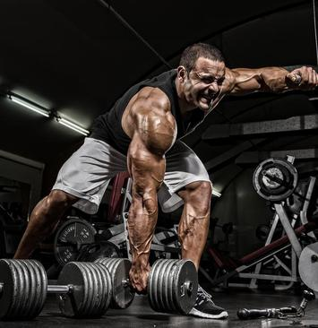 photo regarding Iron Strength Workout Printable titled As soon as health and fitness turns into dangerous - The Hindu