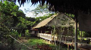 Pristine architecture