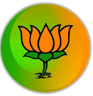Bjp Plans Strategic Ties The Hindu