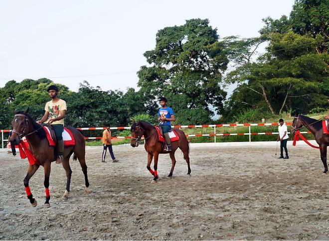 KVASU launches horse riding club