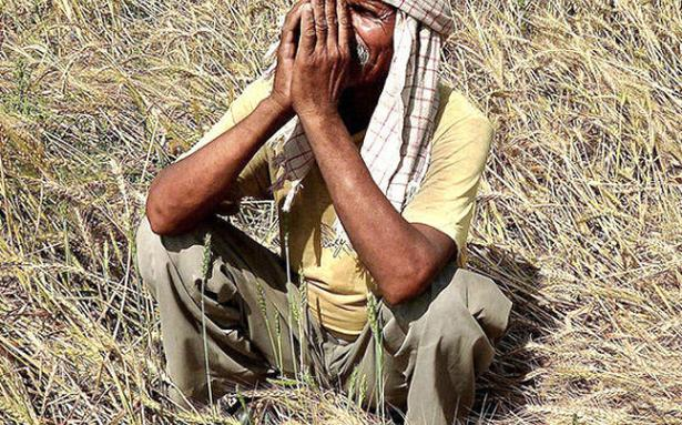 1 in 3 farmer suicides in Vidarbha over Rs 10,000 debt: Study