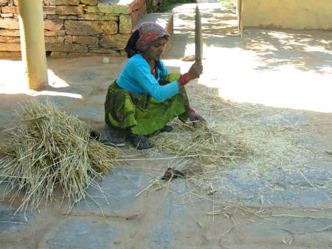 ligening manager job in dehradun