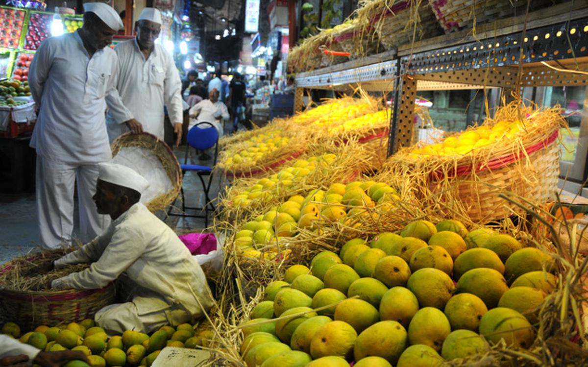EU bans Indian Alphonso mangoes, 4 vegetables from May 1