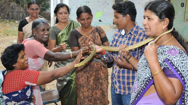 Women Snake Catchers Unleash Their Charm