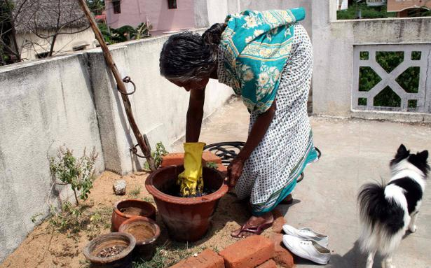 How To Compost Kitchen Waste In 6 5 Steps The Hindu