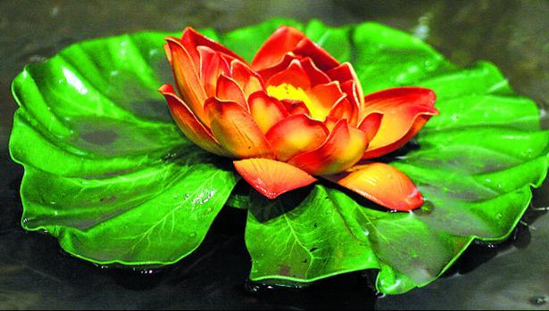 National Flower Lotus Wikipedia In Hindi Flowers Healthy