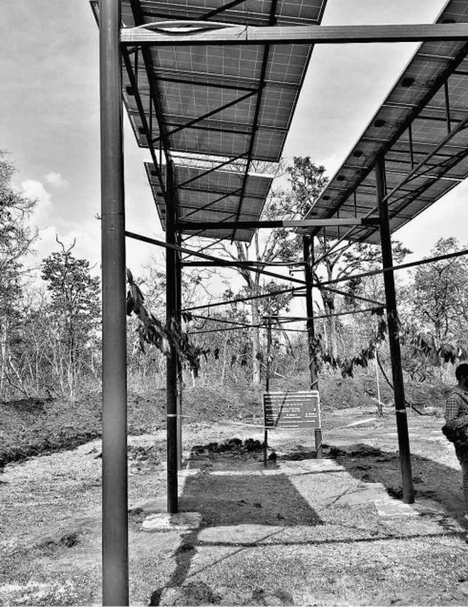 Solar-powered borewell to replenish 'tiger tank'