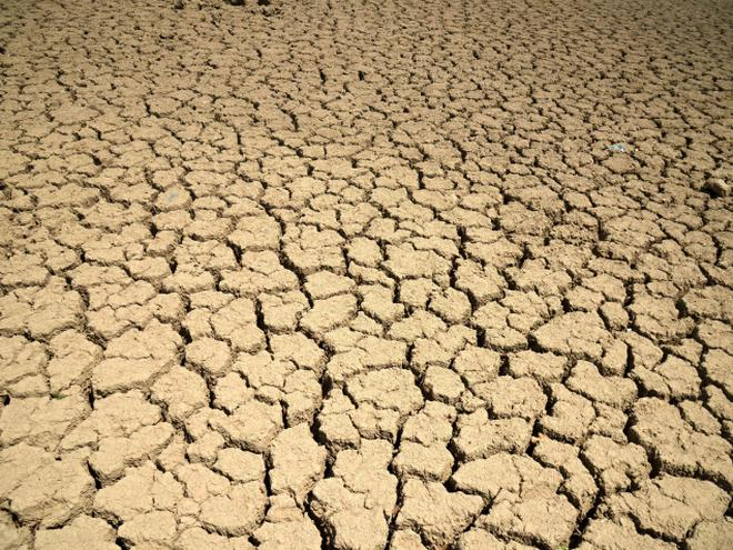 drought the government s manual the hindu
