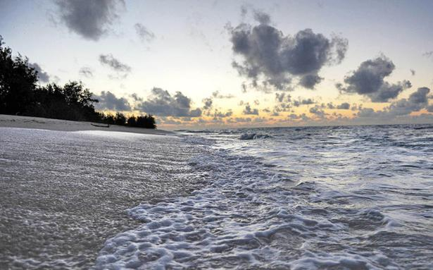 Global warming making oceans sicker national the hindu sciox Images