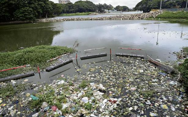 Image result for sewage going into bangalore lakes