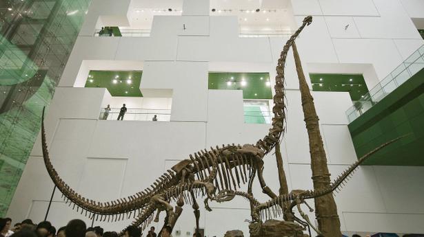 Carbon 14 dating of dinosaur bones