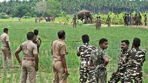 Anti-poaching watchers get pay raise