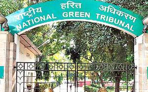 Devise appropriate mechanism over industry expansion: NGT