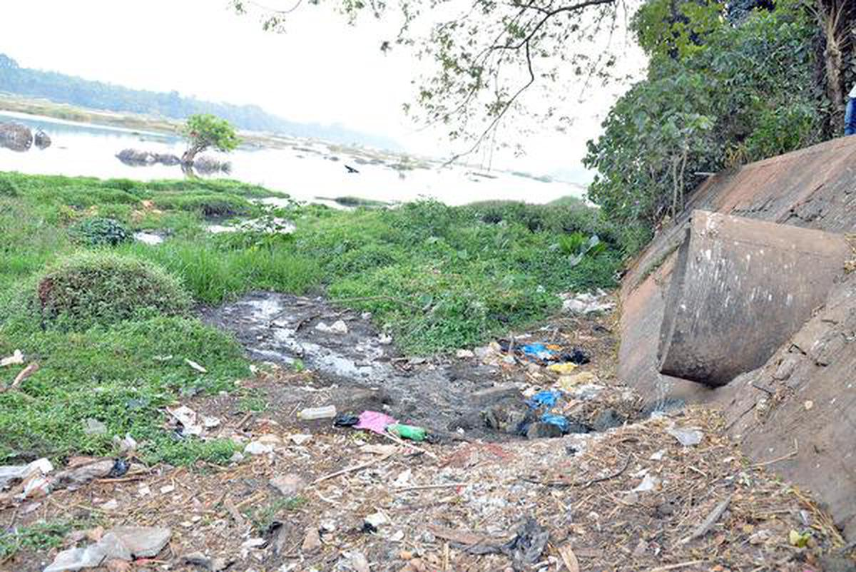 Sewage being directly let into the Netravathiin Thumbe upstream, says Krishna Palemar