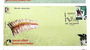 Shankarapura Mallige, Mattu Gulla steal the show at exhibition
