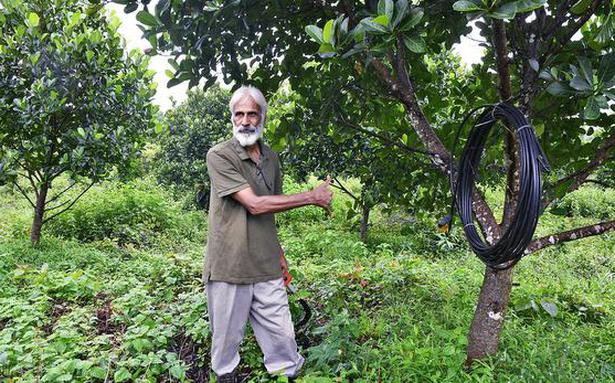 Ex-forest officer capitalises on his love for jackfruit