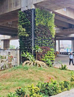 File Photo Of A Vertical Garden On A Metro Pillar.