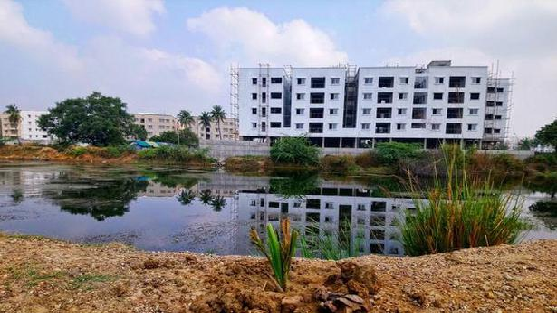 EFI restores Arasankazhani lake - The Hindu