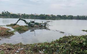 A new forum formed to clean Velachery lake
