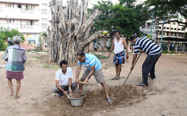 Choolai residents give a new lease of life to a banyan tree hit by Vardah
