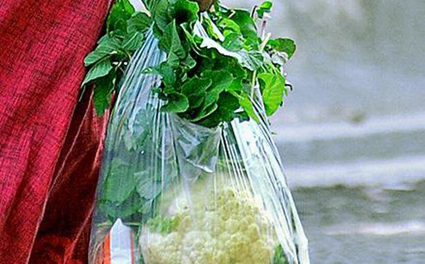 Civic body moots blanket ban on plastic carry bags