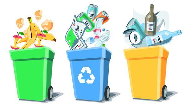 Garbage Segregation The Basics The Hindu
