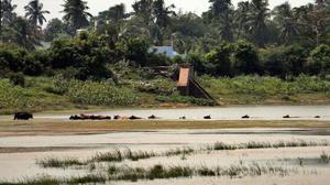 Encroachments threaten Puducherry's largest lake