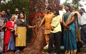 Promote tree protection and rainwater harvesting, Bedi urges officials