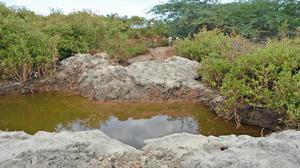 Arikamedu site under threat from sand miners