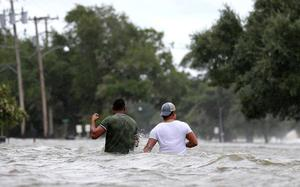 Hurricane Barry's rain and floods hammer Gulf environment