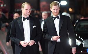 Princes William and Harry prepare to go separate ways