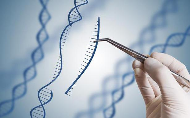 Polish gene project moves to drop Chinese tech on data security concerns