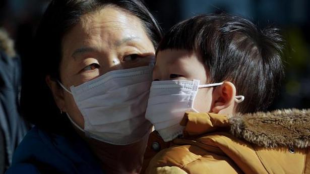 Coronavirus: China bans wild animal trade