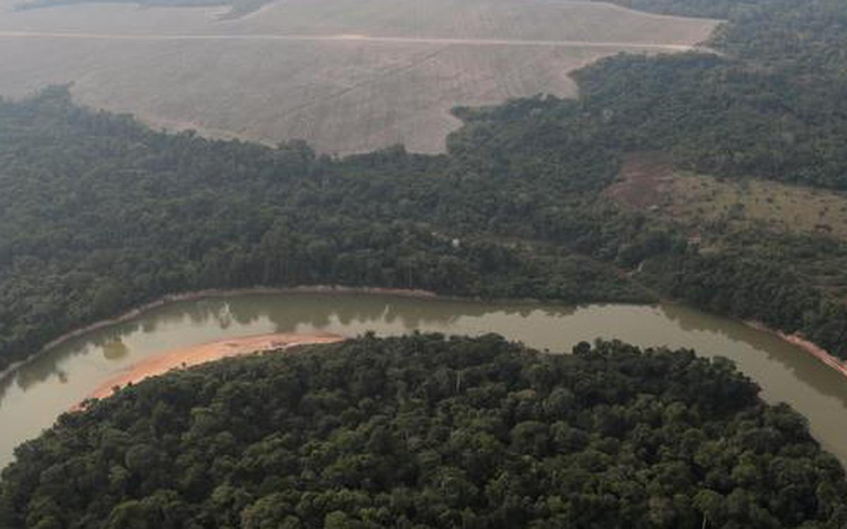 Brazil to redeploy troops to fight Amazon deforestation - The Hindu