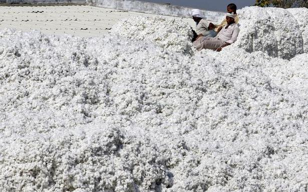 Pakistan's textile industry upset as govt. rejects cotton import proposal from India