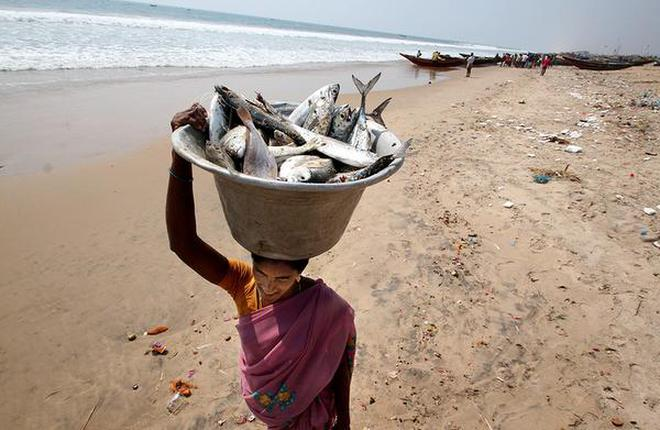 A fish vendor leaves the Chandrabhaga beach in Puri, Odisha, with the stock for
