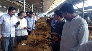 'Jagan will look into concerns of tobacco farmers'
