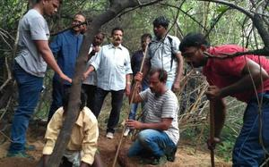 12 red sanders logs seized in A.P., smuggler nabbed after chase