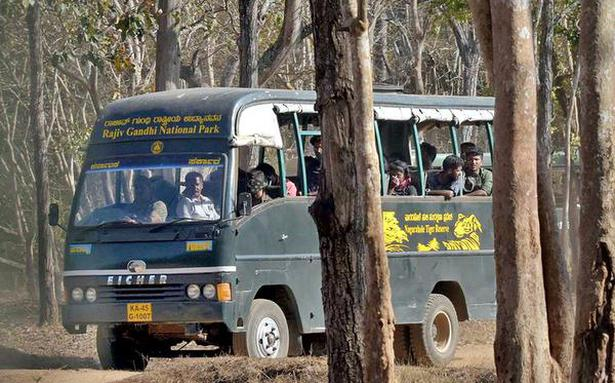 Comply with safari norms in tiger reserves: NTCA