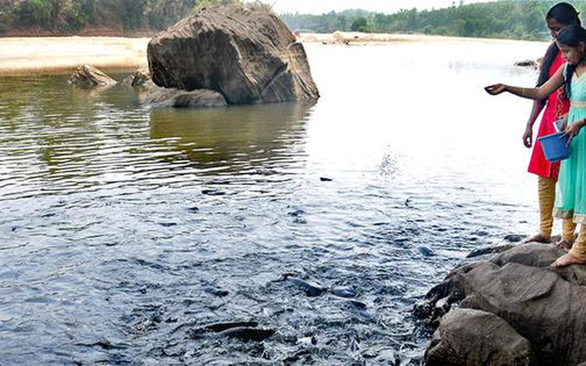 Sand extraction poses threat to fish sanctuary - The Hindu