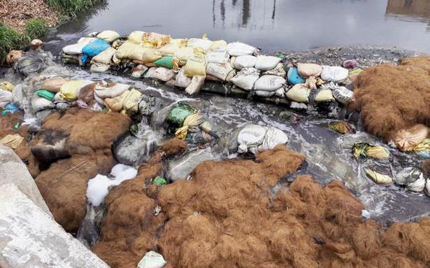 Bengaluru's lakes: Now, civic officials hope for some coir service