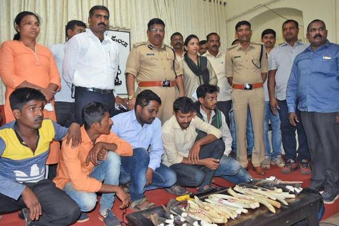 Calangute police bust sex racket, arrest 2, rescue 5