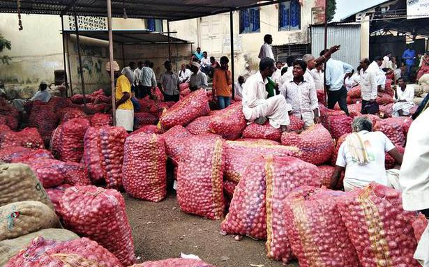 Growers protest as traders slash wholesale price of onion