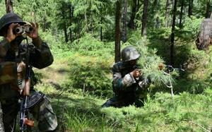 Pakistan violated ceasefire along LoC in J&K's Poonch: defence officials