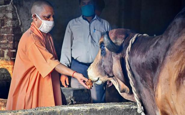 https://www.thehindu.com/news/national/other-states/aahmco/article32296013.ece/ALTERNATES/LANDSCAPE_615/ADITYANATH