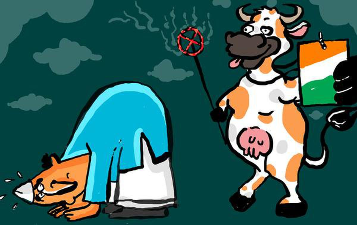 Cow slaughter and the Constitution - The Hindu